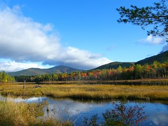 New Hampshire Landscape (Stanley Zimny (Thank You for 33 Million views)) Tags: landscape nh puddingpond pond autumn fall 4 four seasons mountain water trees cloud reflection northconway