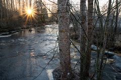 November light (- Man from the North -) Tags: scenery river water finland trees moretrees sunlight sunshine suomi naturephotography nature sun november nikond500 tamron170500mmf28 nikon tamron