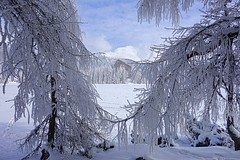 Winter, Slovakia (majka44) Tags: winter snow slovakia mountain sky building nature tree landscape 2018 frozen light forest hightatras