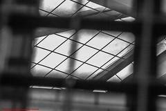 EDIFICIO DE CORREOS-AYUNTAMIENTO DE MADRID-Madrid (FRANCISCO DE BORJA SÁNCHEZ OSSORIO) Tags: ayuntamientodemadrid edificiodecorreos edificio flag españa exposure enfoque encuadre exposicion madrid moment invierno instant instante winter spring summer shot streetphoto photo passion pasión primavera photostreet verano vida otoño amor arrow autumn flechazo focuspoint focus foco framing love light luz life lovely nature naturaleza nice bokeh belleza beauty timeexposure tiempodeexposición temperaturadecolor color colour composition composición colourtemperature detalles detalle detail details desenfoque disparo delicado delicate divertido dof depthoffield
