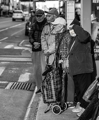 Waiting for the bus (moonbath64) Tags: chinatown sonya7riii sonya7r3 streetphotography sel55f18z nyc newyork blackandwhite
