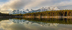 Herbert Lake (Mark McLeod Photography) Tags: 2018 alberta autumn banff canada canmore markmcleod markmcleodphotography rockies colour fall forest landscape herbertlake