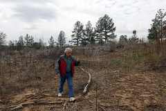 Curtis walks around some of his property. This land has recently been burned, to prepare the soil for the planting of more trees.
