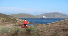 2018-102762 (bubbahop) Tags: 2018 antarcticatrip falklandislands newisland hike