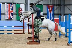 Jo and Silvanos Secret (Ed Swift) Tags: 70200mmf28lisii 7d2 blueridgeequestriancentre blueridgestables canon equestrian horse jump scotland showjumping sport
