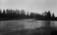 Streams in Finland (Sonofsono) Tags: film finland graflex speedgraphic optar water longexposure black bw white scenery stream