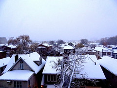 Year The First Snowstorm (dimaruss34) Tags: newyork brooklyn dmitriyfomenko image clouds snowfall buildings roofs trees