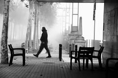 Walking by himself (jaume zamorano) Tags: blackandwhite blancoynegro blackwhite blackandwhitephotography blackandwhitephoto bw boira brouillard catalunya d5500 fog foggy gente lleida monochrome monocromo mist nikon noiretblanc nikonistas niebla people street streetphotography streetphoto streetphotoblackandwhite streetphotograph urban urbana