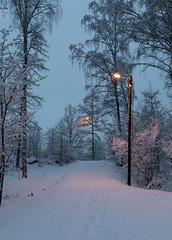 Snowy path (Antti Tassberg) Tags: lumi laaksolahti talvi espoo suomi ilta evening finland scandinavia snow twilight winter