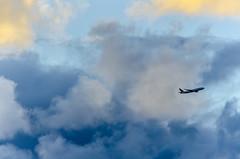 Island Air (rao.anirudh) Tags: hawaii maui