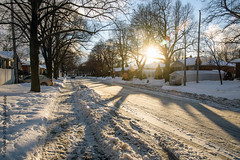 Sundown (caribb) Tags: winter snow white weather cold montreal montréal quebec québec canada urban city 2019 steam street sidewalk sunshine sunset trees tree outside hiver neige bright shadows evening road neighborhood east eastend ville