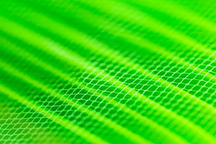 316/365: Go green (judi may) Tags: 365the2018edition 3652018 day316365 12nov18 100xthe2018edition 100x2018 image86100 macromonday macro macromondays green abstract abstraction patterns filledframe canon5d depthoffield dof bokeh