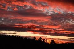 Spektakulärer Abendhimmel (kadege59) Tags: sky wow clouds sunset autumn november suhl albrechts nikond3300