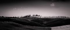Retrospective Tuscan Avenues (Beppe Rijs) Tags: 2018 italien juli sommer toskana italy july summer tuscany
