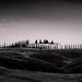 Retrospective Tuscan Avenues