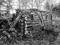 Open air country cabin (Wicked Dark Photography) Tags: bw wisconsin abandoned autumn blackandwhite cabin decay derelict fall logcabin monochrome ruin rurual
