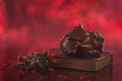 don't let sleeping dragons lie... (Emma Varley) Tags: dragon welsh wales ceramic craft pottery sleeping snoozing fire book berries winter souvenir mementoes happymemories missyoumum helios442