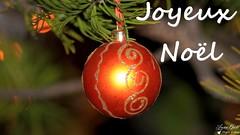 Joyeux Noël (Laurent Quérité) Tags: canonfrance canoneos7d canonef100400mmf4556lisusm joyeuxnoël saintpauletdecaisson gard france noël