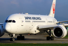 Japan Airlines Boeing 787-8 Dreamliner JA822J (Manuel Negrerie) Tags: japan airlines boeing 7878 dreamliner ja822j tsa songshanairport taxiway closeup design transport travel aviation sightseeing spotting canon trent genx engines livery jal jl taipei plane jetliner airliner