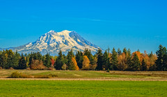 Beautiful Mountain (http://fineartamerica.com/profiles/robert-bales.ht) Tags: facebook fineart haybales mountains people photo photouploads places scenic states washington yelm sky national nature peak landscape snow mountain glacier rainier pacificnorthwest forest volcano stratovolcano mountrainier northwest mount summit cascaderange nationalpark tourism north glaciatedpeak frozen washingtonstate white towering landmark peaceful refreshing pacific mt tranquil volcanic robertbales seattle fallautumn orange yellow blue
