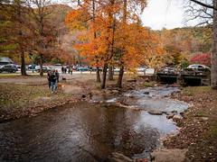 20181104-162107-051 (JustinDustin) Tags: 2018 attraction autumn blairsville fall ga georgia nga northamerica northgeorgia seasonal us usa unitedstates vogelstatepark year