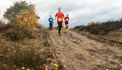 haarlerbergloop 10 km (52)