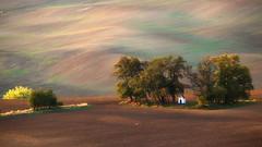 St. Barbara Chapel (Paweł Gałka) Tags: rural landschaft south moravia sunset fields chapel trees green yellow waves light golden hour nature autumn