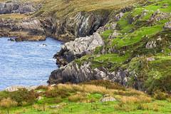 Rocky coastline - Coulagh Bay - Beara Peninsula - Ireland 2018 - (Wilma v H- Back from Beara in Ireland! Behind!) Tags: bearapeninsulaireland coulaghbaybearapeninsula irishcoastallandscape rocks rocky irishlandscape ireland eire atlanticocean 2018 westcork cocork landscape coastal canoneos60d luminositymasks tkactionsv6panel outdoors holiday travel cliffs