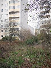 Der Herbst. / 19.11.2018 (ben.kaden) Tags: berlin hohenschönhausen neuhohenschönhausen vincentvangoghstrase städtebauderddr plattenbau architekturderddr stadtnatur 2018 19112018