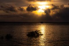 Sunset, Lameroo Beach (Floodet) (betadecay2000) Tags: darwin meer see sea lameroo beach strand flut high tide überflutung überflutet himmel sky sunset clouds cloudy wetter weer weather meteo australien ausssie australie australia austral oz ocean lagune mangrove mangroven wasser baum sonnenuntergang boot wolke ozean landschaft