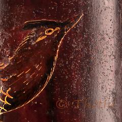 181123 bajm 181126 © Théthi (thethi: pls read my first comment, tks) Tags: gravure bois art ancien oiseau boite usage bruxelles belgique belgium carre c4 macro macromondays dotsandstripes faves33 faves51 faves59 faves62 faves64 bestof2018 setart setvosfavorites setmacro storybitofjapaninbelgium