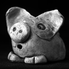 And this little piggy ... (Snorkle-suz) Tags: squareformat bw blackandwhite clay pig ornament surprised closeup small macro fun stilllife tabletop inside ordinaryart newzealand nz aotearoa canoneos600d canoneosrebelt3i canoneoskissx5 canonefs55250mmf456isstm 55250mm