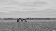 tractor in the field (Ultrachool) Tags: vintage tractors fields princeedwardisland unlimitedphotos cans2s