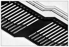 Schatten – shadow (frodul) Tags: abstrakt architektur ausenansicht detail fassade gebäude geländer gestaltung konstruktion linie outdoor stair stairway step treppe münchen haus schatten bayern deutschland stufe licht shadow light bw sw monochrom einfarbig