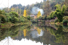 Shangli Ancient Town 上里古镇 (MelindaChan ^..^) Tags: sichuan china 四川 雅安 shangliancienttown shangli ancient town 上里古镇 water reflection ginkgo tree river