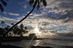 sunset flare (BarryFackler) Tags: puuhonuaohonaunaunationalhistoricalpark nationalparkservice southkona park sunset lensflare ocean water sea puuhonuaohonaunau nationalpark pacificocean palmtrees clouds sky kona hawaii sandwichislands hawaiicounty hawaiianislands polynesia 2018 hawaiiisland pacific seaside seashore beach cove sundown heiau rockwall twilight waves shore nps nationalhistoricalpark barryfackler barronfackler honaunau honaunaubay westhawaii