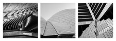 Sydney Opera House Triptych (www.bronwynbell.com) Tags: blackwhite photographiceffects architecturalphotography architecture building city designer exteriorphotography highrise panoramic skyline urban wideangle ~typeofphotography