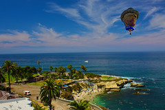 Gogh to La Jolla Cove (oybay©) Tags: vangogh vangoghballoon albuquerqueballoonfestival albuquerque newmexico balloon balloonfestival festival somethingelse color colors colorful vibrant hotairballoons sky blue best lajolla lajollashores shores sandiego california ca calif beach cove sandy palm palmtrees scenery pacificocean pacific ocean clear beautiful nature natural panorama photo photos photograph photographs photography picture pictures pic pics foto sea bay rock