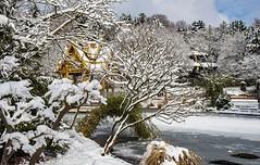 snowy Asia in Munich (werner boehm *) Tags: wernerboehm westpark thaipagode asia winter snow munich