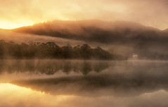 Golden Mist (Tracey Whitefoot) Tags: 2018 tracey whitefoot october autumn fall lake district lakes cumbria golden gold light morning sunrise dawn derwent water derwetnwater reflection reflections cottage mist misty national park
