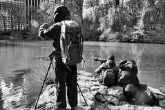 Waiting for the Duck (nyperson) Tags: centralpark photographers newyork blackandwhite