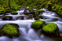 Daily Astrology~November 18th, 2018: Flow Forward (LoveHasWon) Tags: boulders columbiarivergorge gorge gortoncreek green landscape moss mossy nature northwest pacificnorthwest river scenic spring stream water