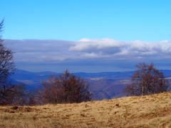 felhők a hegyek fölött / clouds over the mountains (debreczeniemoke) Tags: ősz autumn túra hiking hegy mountain gutin erdély transilvania transylvania táj land tájkép landscape felhő cloud fa tree olympusem5