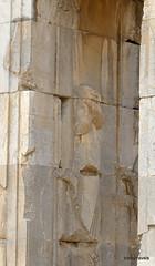 005 Hundred Column Hall (Sedsetoon), Persepolis  (8).JPG (tobeytravels) Tags: artaxerxes xerxes ahurmazda alexanderthegreat