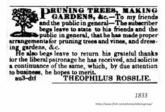 1833 Theophilus Roessle  landscaping (albany group archive) Tags: 1830s old albany ny vintage photograph photo picture historical history historic