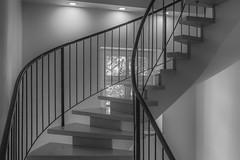 staircase (ro_ha_becker) Tags: architecture stairs staircase monochrome schwarzweiss zwartwit biancoenero blancetnoir blackandwhite blancoynegro minimalarchitecture minimal