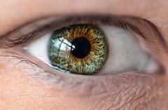 Pre Lasik - Day 18 (giantmike) Tags: closeup eyes face macro person human reflection window eye