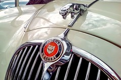 Restless & Wild (cs.spotter123) Tags: great amazing oldtimers oldcars car carspotting cars carphotography carpics dreamcars carphotographer britishcars coolcars classiccars jaguar automobile whips automotive nikon nikond3400 vintage