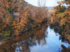 erreka (azucena G. De Salazar) Tags: erreka rio zuhaitzak arboles trees colors fall otoño euskalherria euskadi basquecountry paisvasco araba pobes koloreak colores