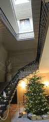 Stairway to Christmas (jpotto) Tags: uk derbyshire kedlestonhall nationaltrust christmas christmastree eastmidlands ambervalley stairs stairway stairwell